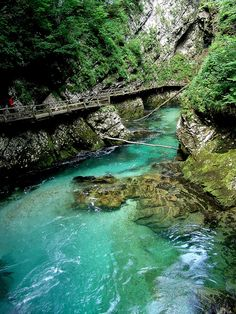 Radovna River flowing through the Vintgar Gorge, Slovenia