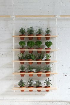 HomeMade Modern DIY Hanging Garden: This DIY vertical garden is an easy-to-make project that can turn a window into a beautiful and productive herb garden. Jardim Vertical Diy, Vertical Garden Diy, Vertical Gardens, Vertical Planter, Vertical Bar, Hanging Herbs, Diy Hanging, Hanging Planters, Hanging Gardens