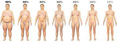body-fat-levels-women
