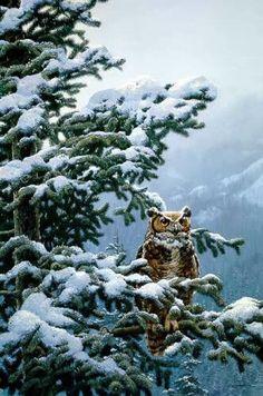 """""""WInter Vigil - Great Horned Owl""""  --  by  John Seerey-Lester"""