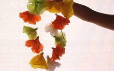 Como fazer colar havaiano
