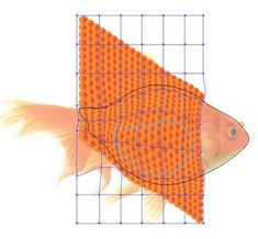 How to Create a Detailed Goldfish Couple with Adobe Illustrator - Tuts+ Design & Illustration Tutorial