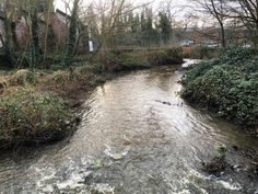 28/12/15: 2 days after the #River #Aire #flooded at #Kirkstall #Leeds I went to photograph and film the aftermath. Here is the #Goit which was responsible for much of the flooding on Kirkstall Road. The Goit flows from the Aire (usually as a stream) at Kirkstall it follows the path of Kirkstall Road then rejoins the Aire at #Armley. Here it has receded greatly from the torrent that it was on Boxing Day. #water #reflection #recovery #emergency #flood #floods #flooding #Yorkshire #England…