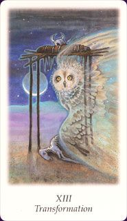 Vision Quest Tarot- Love this one!