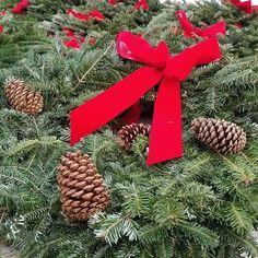 Wreaths for days!!!! #nanticokegardens #wreath  #bows #pinecones  #homedecor #holidaydecor