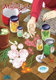 Anime K, Kawaii Anime, Magus Bride Manga, Kore Yamazaki, Chise Hatori, Yume, The Ancient Magus Bride, Fairy Tail Manga, Graphic Wallpaper