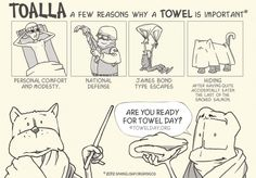 A few reasons why a towel is important