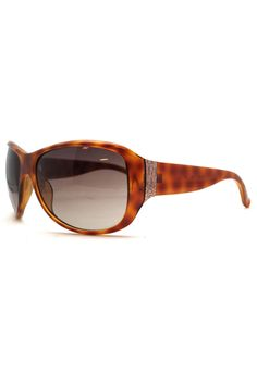 b294d295981 Denver Sunglasses in Havana Since its launch in 1968 Calvin Klein has been  globally recognized as