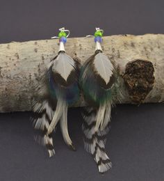 Peacock feather earrings  Long feather earrings by FeathersnThingz