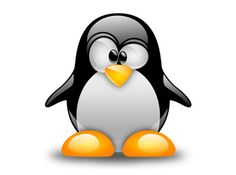 File Operations and Manipulations in Linux