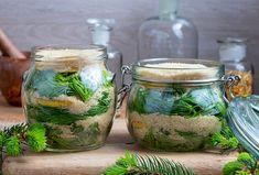 Sirup z mladých smrekových výhonkov proti kašľu Aloe Vera, Vodka, Mason Jars, Med, Alcohol, Mason Jar, Glass Jars, Jars