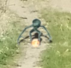 Person Catches Alien Walking In Trail In Budapest, March UFO Sighting News.