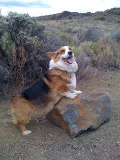 I claim this rock...