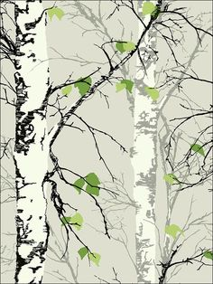 wallpaperstogo.com WTG-132956 Printers Guild Productions Transitional Wallpaper