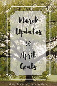 March updates and April goals. How I've been doing in my second month, my popular posts, and what I have planned for next month.