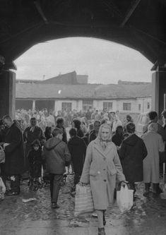 Market History // Milk Market Friday Lunch Specials, Limerick City, Irish Cottage, Emerald Isle, No Time For Me, Old Photos, Ireland, Milk, Marketing