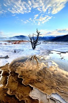 Mammoth Hot Springs - Yellowstone National Park -  Wyoming - USA (von Rob Kroenert)