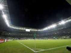 A torcida do Palmeiras fez a diferença nas receitas do clube em 2015 (Marco Galvão / Fotoarena)