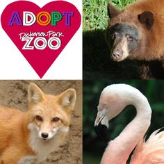 I plan to take the boys to Dickerson Park Zoo this summer.