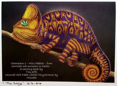 From Intricate ink animals in detail from Tim Jeffs - chameleon 1. Coloured with Faber Castell Polychromos.