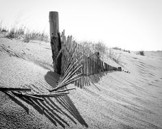 Landscape Photograph: High Key Dunes Prints and downloads are available.