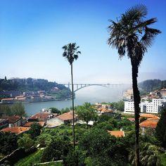 Jungle. #porto #river #douro by troyuk