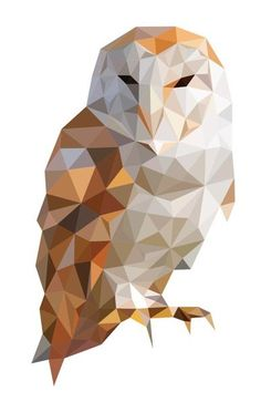 Owl geom colored..