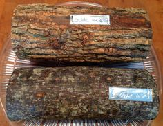 Shitake and Oyster mushroom logs by 2FunGuysandavailable throughWilliams-Sonoma. Theyare inoculated with mushroom spores and produce a crop of mushrooms every two to three months for up to two to three years!