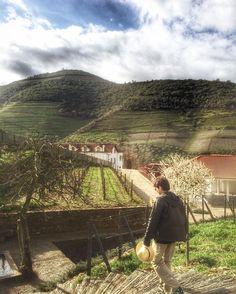 A Quinta do Bomfim é uma das vinícolas pertencentes ao grupo  Symington grupo familiar que apesar de ser super tradicional teve todo o processo de produção do vinho renovado e é hoje uma das empresas mais 'tecnológicas' da região.  . Presentes na região do Douro há 5 gerações (desde 1882) a familia Symington é responsável pela produção de 32% do total do vinho do porto de categoria superior. E os caras são muito bons.  . O vinho DOW'S PORTO VINTAGE PORT 2007 recebeu a pontuação de 100 pontos…
