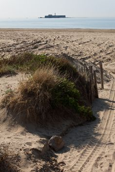 The beach at Cap D'Agde