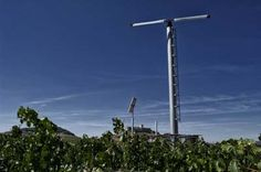 Pago de Carraovejas estudiará los efectos del cambio climático sobre el viñedo dentro de Globalviti http://www.revcyl.com/web/index.php/medio-ambiente/item/8556-pago-de-carraov