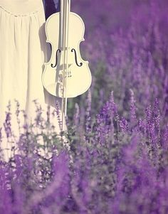 Oh, fields of lavender and the contrast of white...music to my ears.