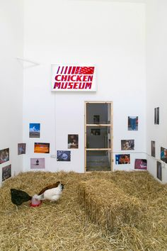 « Chicken Show » Group show, Roman Road Project, London.