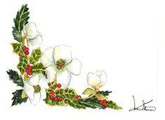Helleborus and Barries by Loredana Mariotto