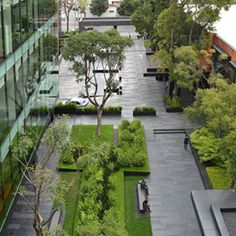 © dlc Architects. Coyoacán Corporate Campus Landscape by DLC Architects
