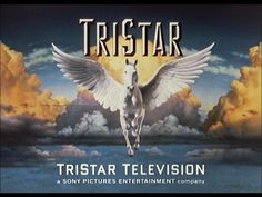 A familiar TV brand is making a return as Sony Pictures TV is relaunching TriStar Television with Suzanne Patmore-Gibbs at the helm. Film Studio, Studio Logo, Sony Pictures Entertainment, Sony Tv, Star Logo, Picture Logo, Tv Channels, Columbia Pictures, Movies