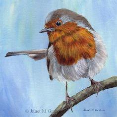 "Daily Paintworks - ""Robin 6"" - Original Fine Art for Sale - © Janet Graham"