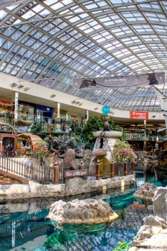 9 Reasons Why You Must Visit West Edmonton Mall, From Penguins To Roller Coasters