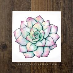 Drawing Pastel Colored Succulent Art Print - Find Joy in Ordinary Moments! Watercolor Art Printed printed on Paper Canvas Textured Paper Available in and Artwork created by Becca Stevens Painting Inspiration, Art Inspo, Style Inspiration, Cute Drawings, Art Drawings Beautiful, Drawings Of Flowers, Amazing Drawings, Mandala Art, Mandala Design