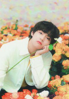 find a man who's better looking than Kim Taehyung Jimin, Bts Selca, Bts Bangtan Boy, Bts Boys, Daegu, Billboard Music Awards, Foto Bts, Bts Kim, Taehyung Photoshoot