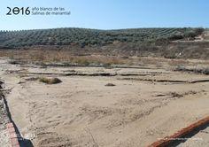 Eras de cristalización de la Salina de Cuesta Paloma (Baena, Córdoba)