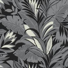 Palm Silhouette York Wallpaper Wallpaper York Blacks Grays Botanical Wallpaper Tropical Wallpaper , Surestrip, Easy to clean , Easy to wash, Easy to strip Palm Leaf Wallpaper, Tropical Wallpaper, Botanical Wallpaper, Wallpaper Roll, Stripped Wallpaper, Wallpaper Warehouse, Drops Patterns, Neutral Color Scheme, Silhouette