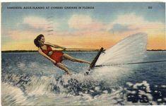 Florida Style, Florida Girl, Old Florida, Florida Home, Cypress Gardens, Places In Florida, Boston Public Library, Sunshine State, Daredevil