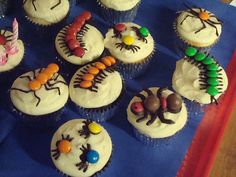 Creepy crawlie cupcakes | Selection of (chocolate) bugs for … | Flickr