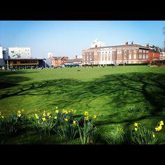 Springtime at Goldsmiths University of London
