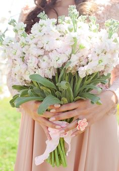 Lovely simple bouquet design of blush stocks captured by Heather Molina.