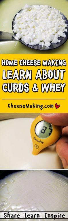 Curds and Whey FAQ | How to Make Cheese | Cheesemaking.com
