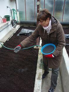 Vegetable Garden, Gardening, Garden, Vegetables Garden, Lawn And Garden, Vegetable Gardening, Veggie Gardens, Horticulture
