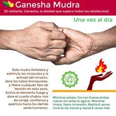 Ganesha Mudra balancedwomensblog.com