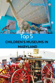 Explore the Top Five Children's Museums in Maryland this Spring. From airplanes to maritime fun there is something for every child. Family Getaways, Family Vacation Destinations, Travel Destinations, Toddler Travel, Travel With Kids, Family Travel, Museums In Maryland, Children's Museum, Sea To Shining Sea